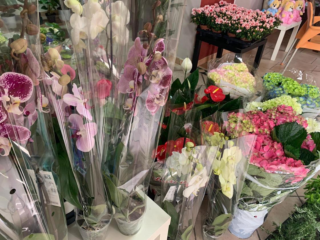 I fiori: un regalo adatto per ogni occasione - Fioreria ...